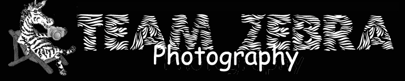 Team Zebra Photography-Logo on Black-800x160(1).jpg
